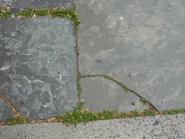 New York City sidewalk, New York City crack.