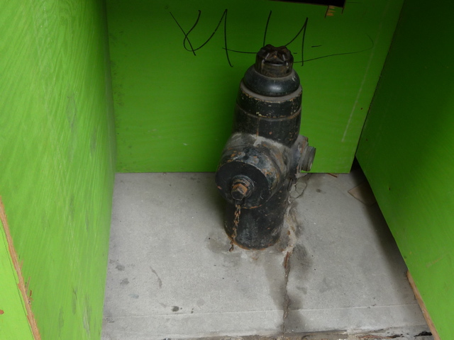Fire Hydrant and Green""
